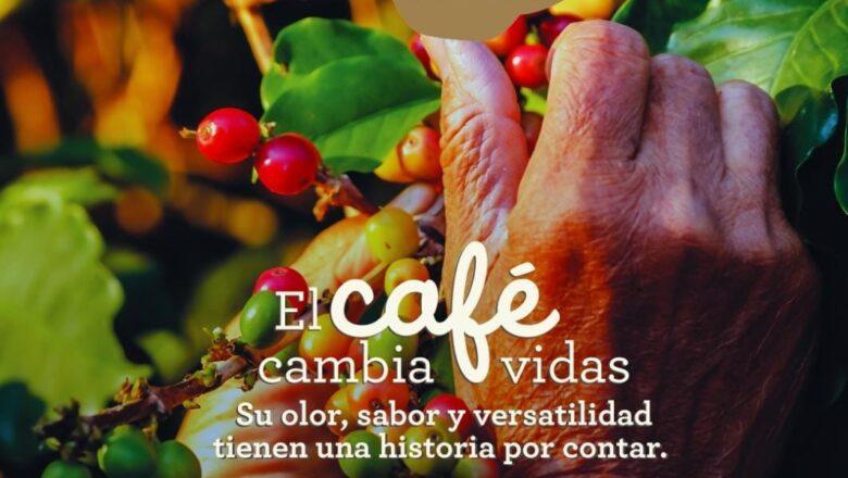 Llega la décimo primera versión de 'Carulla es café', la feria que impulsa el consumo del grano cultivado por 540 mil familias caficultoras